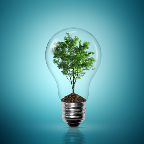 A lightbulb with a tree inside of it